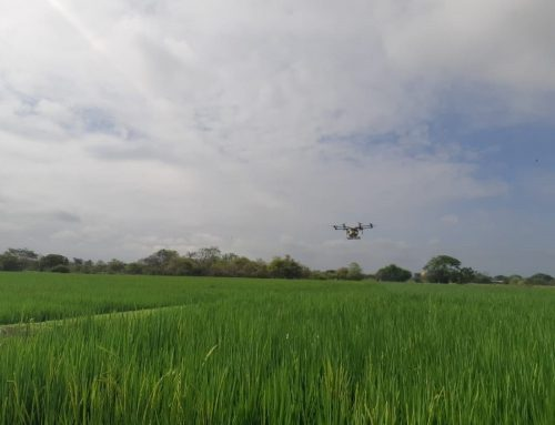 B4IG Incubator: Drones for Smallholder Farmers